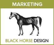 Black Horse Design Marketing (Nottinghamshire Horse)
