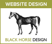 Black Horse Design Website Design (Nottinghamshire Horse)