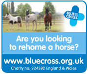 Blue Cross (Nottinghamshire Horse)