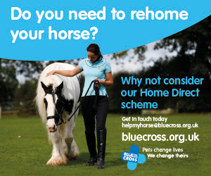 Blue Cross 2020 A (Nottinghamshire Horse)