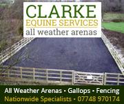 Clarke Equine Services  2018 (Nottinghamshire Horse)