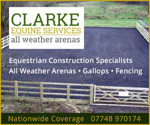 Clarke Equine Services 2020 (Nottinghamshire Horse)