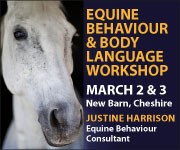 Justine Harrison Workshop March 2019 (Nottinghamshire  Horse)