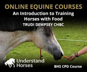 UH - An Introduction To Training Horses With Food (Nottinghamshire Horse)